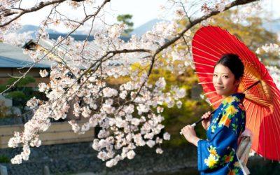 Dodiplomski študij na Japonskem